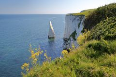 Old Harry Rocks, white cliffs  located at Handfast point near Swanage Stock Photo