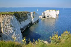 Old Harry Rocks, white cliffs  located at Handfast point near Swanage Stock Image