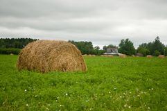 Old hay bale Stock Image