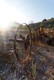 Old hay rake at sunrise, Italy Royalty Free Stock Photo