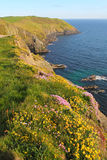 Old head of Kinsale Royalty Free Stock Image