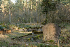Old headstone. In forgotten German cemetery located in  Polish forest Royalty Free Stock Image