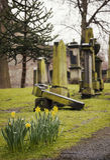 Old headstones in graveyard Stock Photo