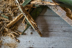 Old heap of old broken wood boards with old nails. Texture background. Royalty Free Stock Photo