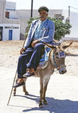 Old hellenic man and donkey Royalty Free Stock Photo