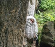 Old hermit peeks behind rock. stock photography