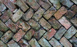 Old Herringbone brick wall Stock Photography