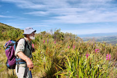 Old hiker, wild flowers, blue mountains Royalty Free Stock Photography