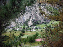 Old Himalayan Village as seen through Pine Trees Royalty Free Stock Images