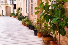 Flower pot row on the ground. Old, historic city street view with flower pot row on the ground, along the facades of ancient houses stock image