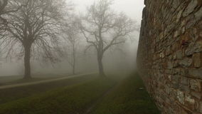 Old Historical Ancient Castle Walls and Forest in Misty Foggy Day stock video