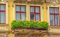 Old historical building facade details. – windows and balcony with decorative sunflowers Stock Images