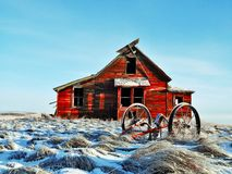 Old Home Stead. Left standing in the middle of a wheat field Royalty Free Stock Photo