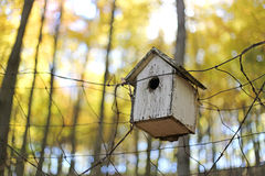 Old Homemade Birdhouse on Fence in Autumn Woods Royalty Free Stock Photos