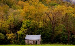 Old Homestead in Autumn Trees Royalty Free Stock Image