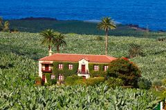 The old homestead on a banana plantation Royalty Free Stock Photography