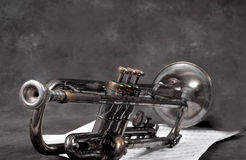 The Old Horn. Retired horn Stock Photos