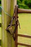 Old horse bridle on gatepost Stock Images