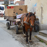 Old horse cart Stock Photography