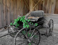 Old horse drawn buggy. Stock Photo