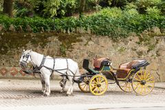 Old horse-drawn carriage parked on cobbled street. Old horse-drawn carriage with two white horses parked in cobbled street with old stone wall and vegetation in stock photography