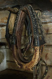 Old horse harness on the wall Stock Photo