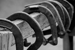 Old horseshoes on fence. Black and white photograph of old horseshoes hanging on a fence Stock Photo