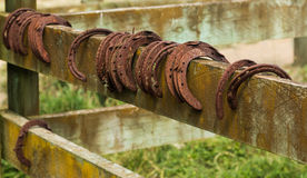 Old Horse Shoes. Some rusted used horse shoes on a fence rail Stock Photography