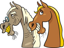 Old horse and young one. Cartoon  illustration of old horse and young one Stock Images