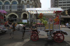 Old Horsecart in Mumbai city Royalty Free Stock Photo