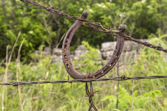 Old horseshoe on barbed wire fence Royalty Free Stock Photos