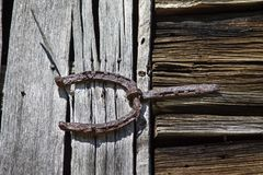 Old horseshoe used as antique barndoor hinge Royalty Free Stock Images