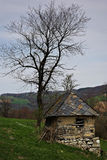 Old House. Abandoned old mountain cabin and leafless tree against stormy cloudy sky Stock Photo