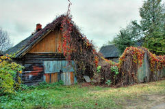 Old house. In Belarus. Autumn 2007 Royalty Free Stock Image