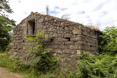 Old House in the Azores. An old abandoned house overgrown with plants in Ginetes on Sao Miguel island in the Azores stock images