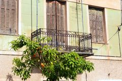 Old House Balcony With Orange Tree. An old pale green stucco house with brown wooden shutters, and an orange tree growing under an iron lace balcony Royalty Free Stock Images