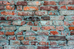 Old house brick wall. Turquoise orange. Royalty Free Stock Images