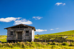 Old House. Stock Image