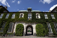 Old house covered with green plants in Copenhagen - Denmark Stock Photos