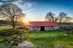 Old House on Dartmoor Royalty Free Stock Photo