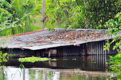 Old house drown in the water Stock Images