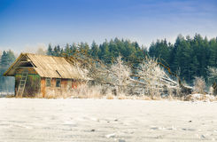 Old house with fallen tree Royalty Free Stock Photos