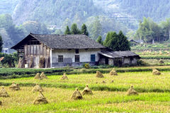 Old house in the farm. An old single story building house in the farm near the mountain ,photo taken in China,in autumn Stock Photos