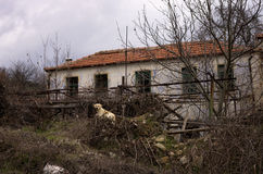 Old house in Florina, Greece Royalty Free Stock Images