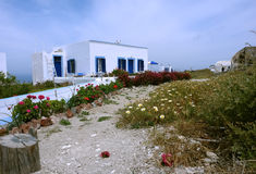Old house and flowers on Santorini Island. Royalty Free Stock Photo
