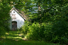 Old House in a forest. Stock Images