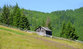 An old house in forest Stock Images