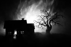 Old house with a Ghost at night with spooky tree or Abandoned Haunted Horror House in toned foggy sky with light. Old mystic build. Ing in dead tree forest vector illustration