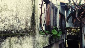 Old house. Grandpha old house Royalty Free Stock Images