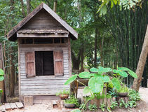 Old house in the green forest Royalty Free Stock Photography